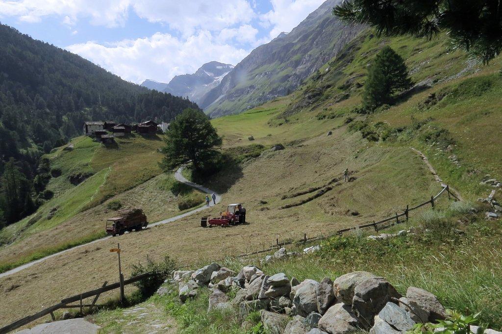 Hay making near Zmutt August 2014
